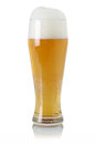 Beer in glass with foam a isolated on a white background Royalty Free Stock Photo
