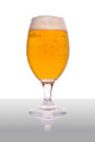 Beer glass with reflection isolated on white Royalty Free Stock Image