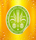 Beer label on beer background with drops Stock Images