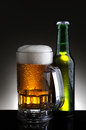 Beer Mug and Bottle Stock Photos