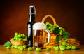 Beer Mug and Bottle with Hop Flower Royalty Free Stock Photo