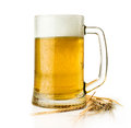 Beer mug with ears isolated on white Royalty Free Stock Photo