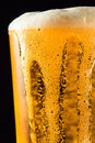 Beer mug with froth Royalty Free Stock Photography