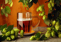 Beer mug and hops Royalty Free Stock Photo