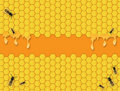 Bees Background Royalty Free Stock Photo