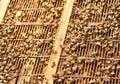 Bees at beehive