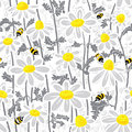 Bees and camomile Stock Photography