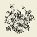Bees flying to the flower. Hand drawn beekeeping. Vector illustration