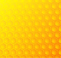 Bees honeycomb, seamless pattern background Royalty Free Stock Photo