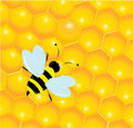 Bees and honeycombs Royalty Free Stock Photos