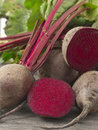 Beet root Stock Images