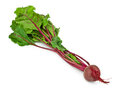 Beet root on white Stock Photos