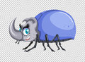 Beetle with blue shell