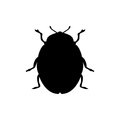 Beetle insect black silhouette animal Royalty Free Stock Photo