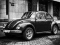 Beetle retro car black and white image with Stock Images