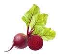 Beetroot with leaves isolated on white Royalty Free Stock Images