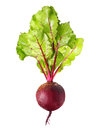 Beetroot with leaves isolated on white Stock Photos