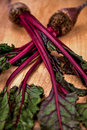 Beets still life on wood cutting board Royalty Free Stock Image
