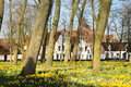 Beginenhof spring time in beguinage in bruges belgium the'princely beguinage ten wijngaarde' with its whitewashed house fronts Royalty Free Stock Photos