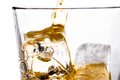 Beginning pouring scotch whiskey in glass with ice cubes on white Royalty Free Stock Photo