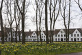 Beguinage of bruges and daffodils in early spring Stock Photography