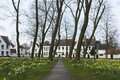 Beguinage of bruges and daffodils in early spring Stock Photo