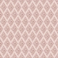 Beige colors damask style pattern design original and symbol series Stock Photo