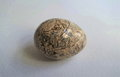 Beige Stone Egg Royalty Free Stock Photo