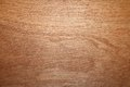 Beige striped texture of wood Royalty Free Stock Photo