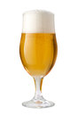 Belgian Ale (Beer) Isolated with clipping path Royalty Free Stock Photo