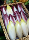 Belgian endives in basket Stock Photos