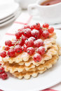 Belgian waffles with red currant sprinkled powdered sugar on the plate vertical Stock Images