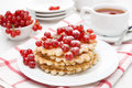 Belgian waffles with red currant sprinkled with powdered sugar and tea close up Royalty Free Stock Images