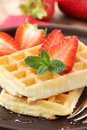 Belgian waffles stack of delicious freshly baked with fresh strawberries and liquid honey Royalty Free Stock Images