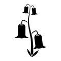 Bell flowers flora botany pictogram