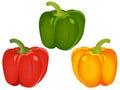 Bell Pepper Capsicum Vector Illustration Set Royalty Free Stock Photo