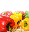 Bell Pepper close up Stock Images