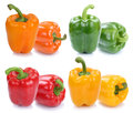 Bell pepper peppers collection paprika paprikas colorful vegetab Royalty Free Stock Photo