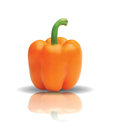 Bell pepper with reflection in editable vector format Stock Photography