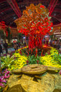 Bellagio hotel conservatory botanical gardens las vegas jan chinese new year in on january in las vegas there are five seasonal Stock Photography
