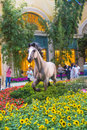 Bellagio hotel conservatory botanical gardens las vegas june summer season in on june in las vegas there are five seasonal themes Stock Photography