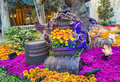 Bellagio hotel conservatory botanical gardens las vegas nov fall season in on november in las vegas there are five seasonal themes Royalty Free Stock Photography