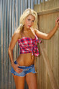 Belle jeune cow-girl blonde sexy Image stock