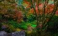 Bellevue Botanical Garden, Washington State