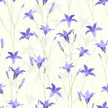 Bellflower seamless background Stock Images