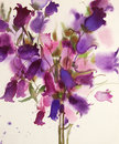 Bellflowers, watercolor Stock Photos