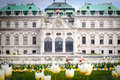 Belvedere palace vienna austria with spring tulips Royalty Free Stock Image