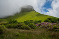 Ben bulben republic of ireland on a partly sunny day with rhododendron in the foreground sligo Stock Image