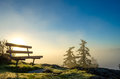 Bench above it all a peaceful the fog and tree tops backlit by a rising early morning sun Royalty Free Stock Photo