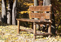 Bench in autumn wooden near trees the sun Royalty Free Stock Image